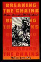 Breaking the Chains book cover